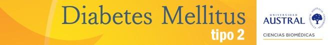 Curso Universitario sobre Diabetes Mellitus tipo 2