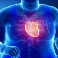 La obesidad altera los corazones de los jóvenes