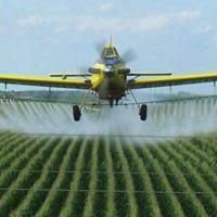 Los pesticidas pueden aumentar el riesgo de autismo