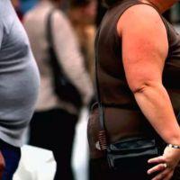 Se describe por primavera vez que la proteína supresora de tumores p53 podría tener un papel protector contra la obesidad