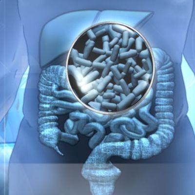 Cuestionan el uso masivo de probióticos