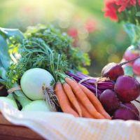 Menos cánceres entre los consumidores de alimentos orgánicos