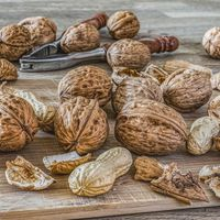 El consumo regular de frutos secos se asocia con menor riesgo cardiovascular