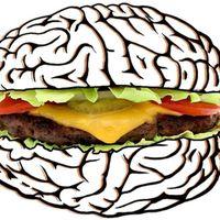 El tabaco o la obesidad influyen en el deterioro del cerebro