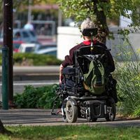 La obesidad y su papel en la esclerosis múltiple