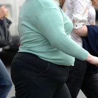 Descubren un nuevo mecanismo que regula la inflamación en la obesidad y la diabetes