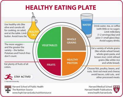 Plato de la Alimentación Saludable
