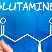 Estudian el uso de la glutamina contra la obesidad