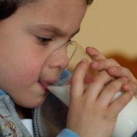 Un estudio indicaría menor riesgo de sobrepeso entre los niños que beben leche entera