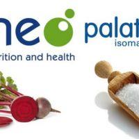 Palatinose, un carbohidrato de liberación lenta demuestra el éxito en el control de peso