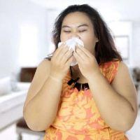 Observan un vínculo entre obesidad y la virulencia de la gripe común o estacional en ratones