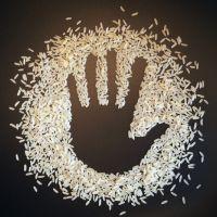 Nutrición en Situaciones de Emergencias Humanitarias