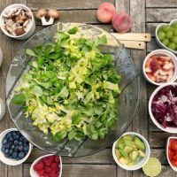Plant Based Diet