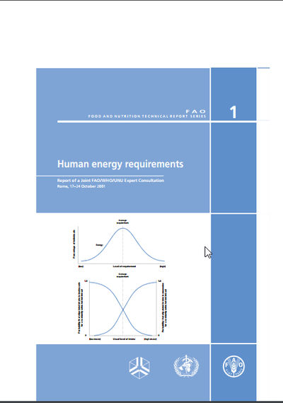 Human Energy Requirement