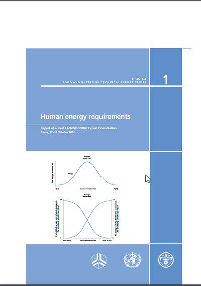 Human Energy Requirement
