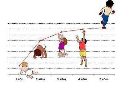 Patrones de crecimiento infantil de la OMS hasta 5 años