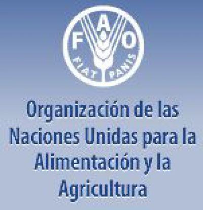 Base de datos de composición de química de alimentos de América Latina: Latinfoods - FAO