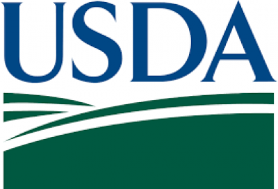 Base de datos de composición química de alimentos de Estados Unidos: USDA (National Nutrient Database for Standard Reference)