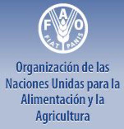 Base de datos de composición química de alimentos internacionales: InFoods- FAO