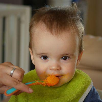 Consenso para las prácticas de alimentación complementaria en lactantes sanos