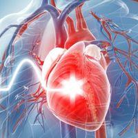 Advierten por signos de envejecimiento arterial precoz en adultos jóvenes