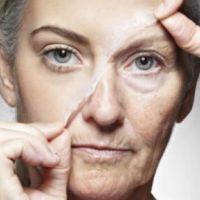 Una dieta baja en calorías retrasaría el envejecimiento