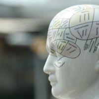 Psicoterapia Nutricional